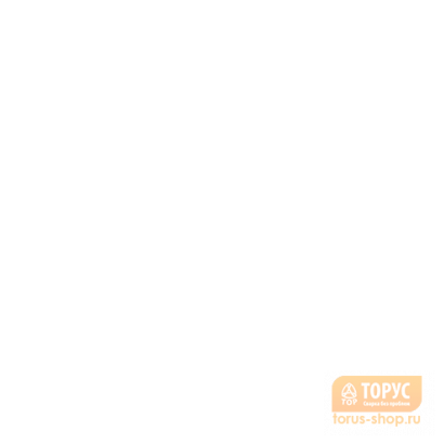 ТОРУС-260 + комплект сварочных проводов  в фирменном магазине Торус